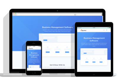 WordPress Responsive Business Management Software Theme