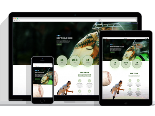 WordPress Responsive Sport Team Theme